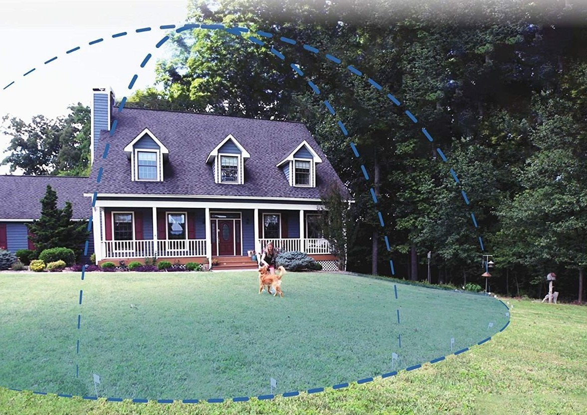 A visualization of an electric dog fence