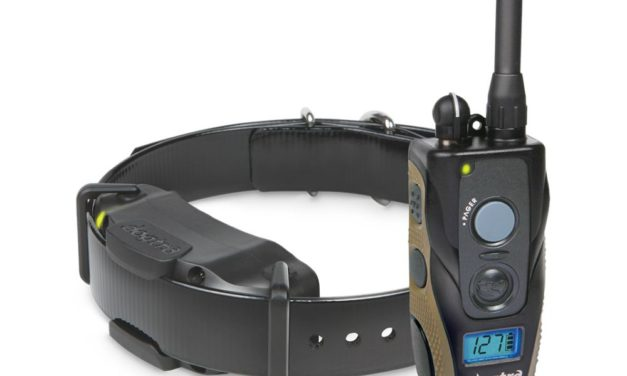 Using The Vibration & Tone Dog Shock Collar Feature