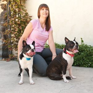 A woman using static shock stimulation for her two dogs